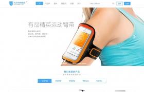产品展示 大气精美企业网站模板